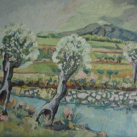 Ulivi - Athos Faccincani