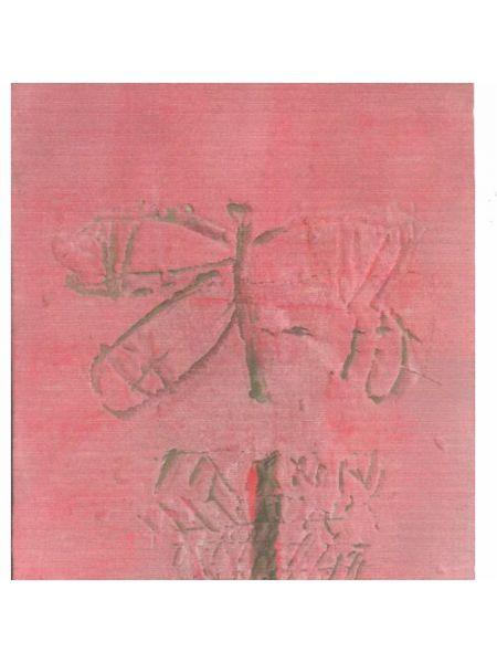Farfalla su Fondo Rosa - Giorgio Celiberti