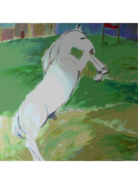 Il Cavallo di Garibaldi - Saverio Barbaro
